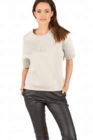 Essentiel Antwerp |  Sweater Nikkie | grey  | Picture 2