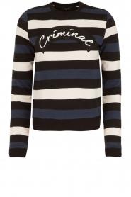 NIKKIE | Gestreept sweater Criminal | blauw/wit/zwart | Afbeelding 1