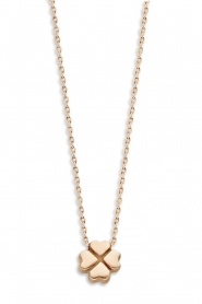 Just Franky |  14k gold necklace Clover | yellow gold   | Picture 1