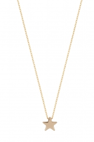 Just Franky |  14k gold necklace Star | gold  | Picture 1
