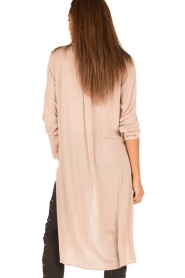 Blaumax |  Blouse Giulia | pink  | Picture 5