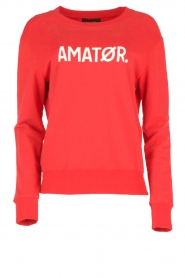 Sweater Baby Logo | rood