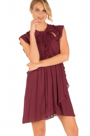 IRO |  Dress Aya | bordeaux  | Picture 6