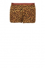 Love Stories | Pyjama shorts Leopard Avocado | groen  | Afbeelding 1