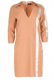 ELISABETTA FRANCHI |  Dress Cosmo | pink  | Picture 1