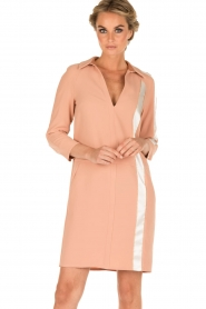 ELISABETTA FRANCHI |  Dress Cosmo | pink  | Picture 2
