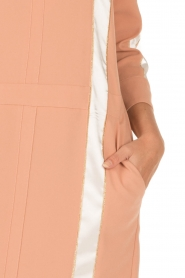 ELISABETTA FRANCHI |  Dress Cosmo | pink  | Picture 6