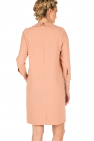 ELISABETTA FRANCHI |  Dress Cosmo | pink  | Picture 5