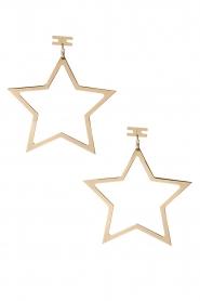 ELISABETTA FRANCHI | Oorbellen Star | goud  | Afbeelding 2