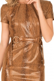 Ana Alcazar |  Dress Bentley | brown  | Picture 6