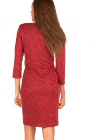 Ana Alcazar |  Dress Celeste | red  | Picture 5