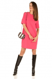 Tara Jarmon |  Dress Esther | pink   | Picture 3