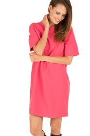 Tara Jarmon |  Dress Esther | pink   | Picture 2