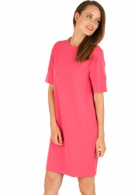 Tara Jarmon |  Dress Esther | pink   | Picture 4