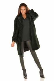 Tara Jarmon | Faux fur jas Canard | groen  | Afbeelding 3
