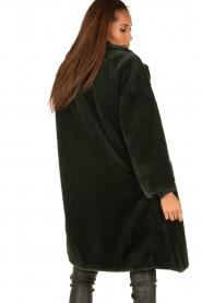 Tara Jarmon | Faux fur jas Canard | groen  | Afbeelding 5