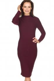 NIKKIE |  Dress Jaleesa | bordeaux   | Picture 2