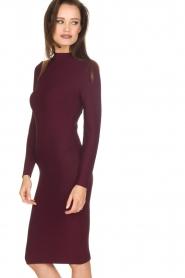 NIKKIE |  Dress Jaleesa | bordeaux   | Picture 4