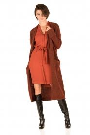 Dante 6 | Jurk Hepburn | rood  | Afbeelding 3