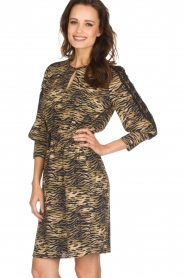 Set |  Animal print dress Delmira | animal print  | Picture 4