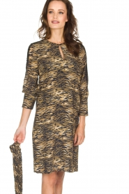 Set |  Animal print dress Delmira | animal print  | Picture 6
