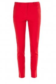 Atos Lombardini | Pantalon Brandy | rood  | Afbeelding 1
