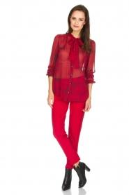 Atos Lombardini | Pantalon Brandy | rood  | Afbeelding 3