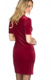 Aaiko | Velvet jurk Liane | rood  | Afbeelding 5