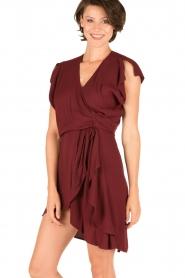 IRO |  Dress Tralor | bordeaux  | Picture 2