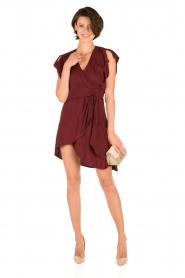 IRO |  Dress Tralor | bordeaux  | Picture 3