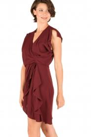 IRO |  Dress Tralor | bordeaux  | Picture 4