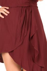 IRO |  Dress Tralor | bordeaux  | Picture 7