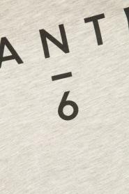 Dante 6 | T-shirt logo | grijs  | Afbeelding 6