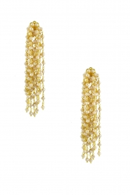 Miccy's |  Earrings Edessa | Gold  | Picture 1