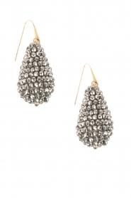 Miccy's | Oorbellen grote kristallen Druppel | Zilver  | Afbeelding 2