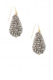 Miccy's | Oorbellen kristallen Druppel | Zilver  | Afbeelding 1