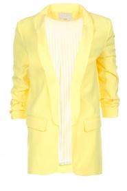 Aaiko    Blazer Pins   yellow    Picture 1