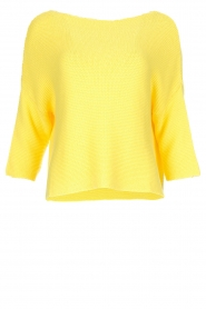 Aaiko |  Sweater Chenna | yellow  | Picture 1