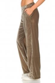 Dante 6 | Fluwelen broek Seduce | taupe  | Afbeelding 5