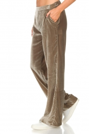 Dante 6 |  Velvet pants Seduce | taupe  | Picture 4