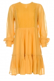 Munthe |  Dress Penny | yellow  | Picture 1