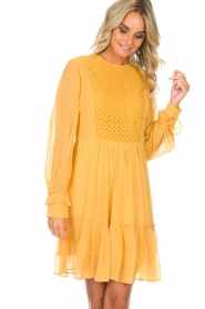 Munthe |  Dress Penny | yellow  | Picture 4