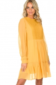 Munthe |  Dress Penny | yellow  | Picture 5