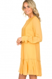 Munthe |  Dress Penny | yellow  | Picture 6