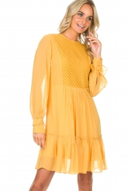 Munthe |  Dress Penny | yellow  | Picture 2