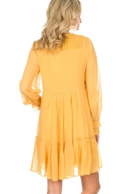 Munthe |  Dress Penny | yellow  | Picture 7
