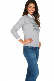 French Disorder |  Luxurious sweater Tout Schuss | Light grey  | Picture 5