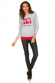 French Disorder   Luxe sweater Après Ski   lichtgrijs    Afbeelding 3