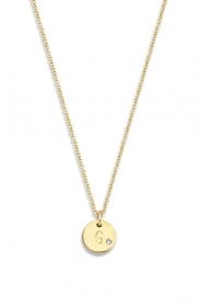 Just Franky |  14k golden necklace Coin Diamond 43 cm | yellow gold  | Picture 2