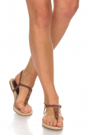 Maluo |  Leather sandals Mabel | bordeaux  | Picture 2